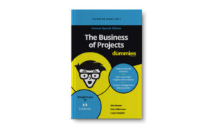 900x550 projects for dummies blog
