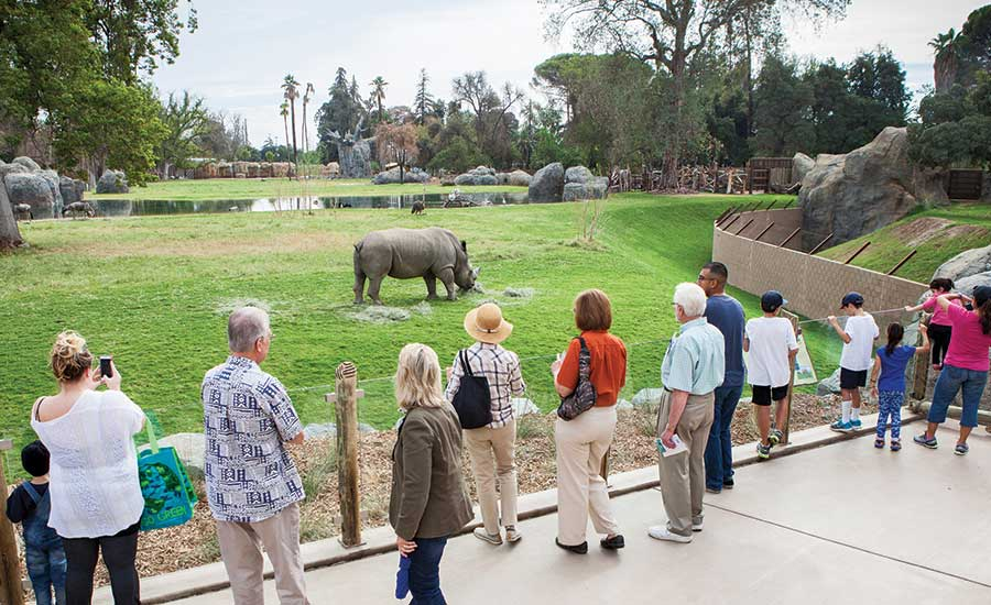 African Adventure rhino exhibit