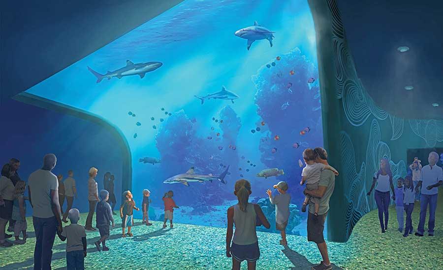 When Is Aquarium Opening In St Louis - Aquarium Views