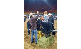 National Western Stock Show Capital Improvements and Site Upgrades