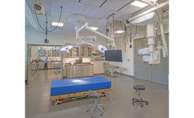 Denver Zoo Surgery Suite
