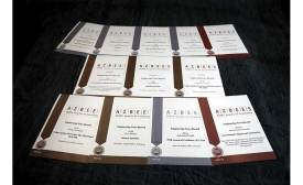 ASBPE awards