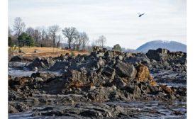 Power plant coal-ash cleanup