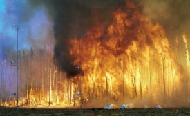 Canada's Northwest Territories high-intensity crown-fire burn experiment