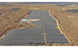 Gold Meadow Farms