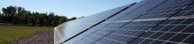 NYBC Institute StartsgroSolar Solar Farm