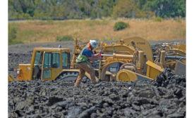 Elkhorn setback levee
