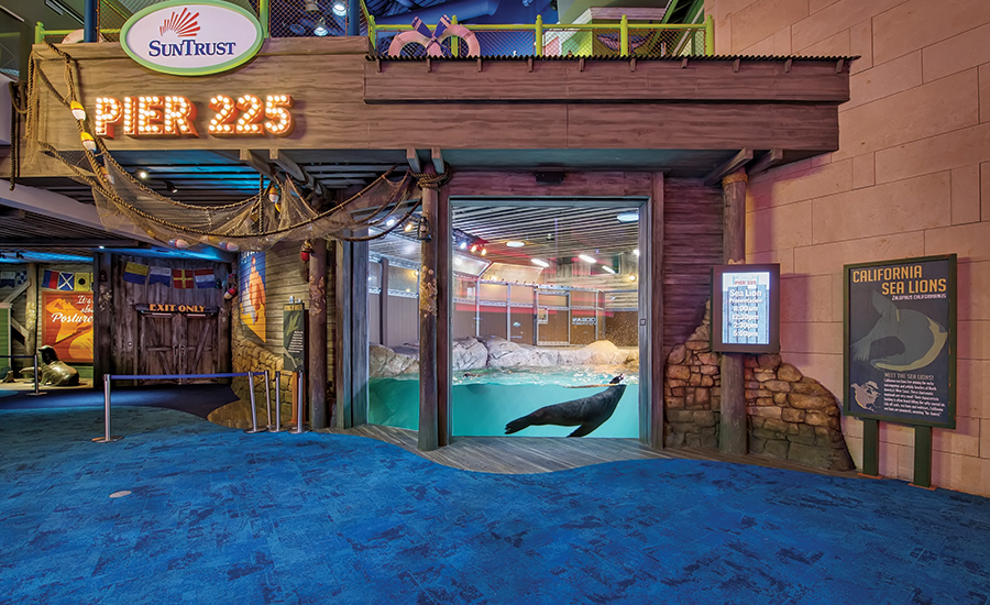 Sports Entertainment Best Project Georgia Aquarium Sea