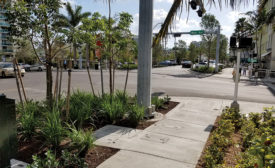 Miami Beach neighborhood improvements