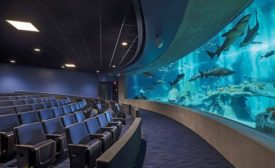OdySea Aquarium
