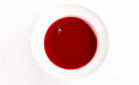 Fly_in_soup.jpg