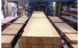 lumber_trade.png