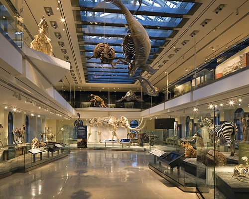 Los Angeles County Natural History Museum Jobs