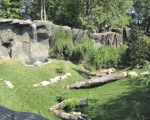 Best Projects Small Project: Cincinnati Zoo & Botanical Garden Cat Canyon