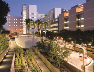 The LAC + USC Medical Facility