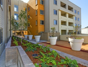 Colma�s Green, Transit-Oriented Trestle Glen Community Opens Doors