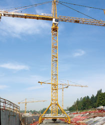 Rail-mounted tower cranes provide efficient hoist capacity over large work area.