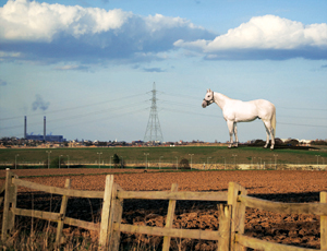 White-horse replica, 50 m tall, may grace ground in U.K.