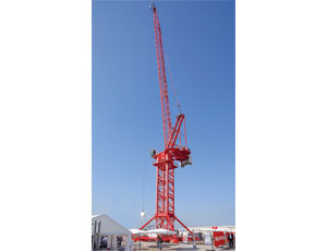 Big Tower Crane: High Capacity