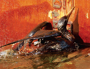 The Gulf Oil-Spill Disaster Is Engineering's Shame 52/49